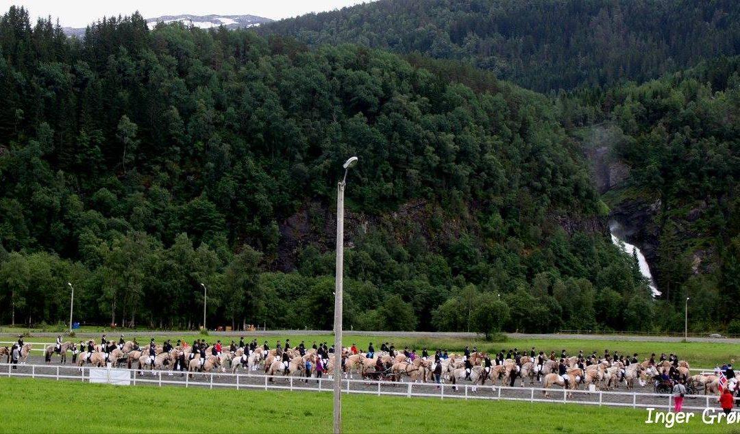 Fjordhest-NM 2016 er i gong!