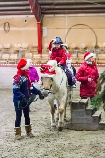 Vellukka «Jul i stallen» på Norsk Fjordhestsenter