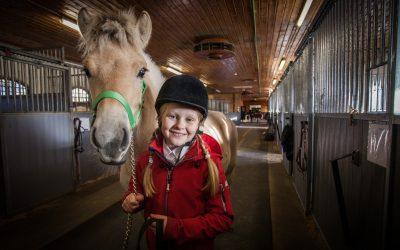 Fjordhest med i NRK-serie