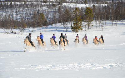 Vintersamling for Barnas Fjordhestlag