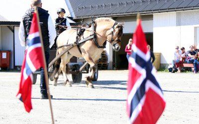 Program for hingsteutstillinga på Nordfjordeid 1.-5. mai