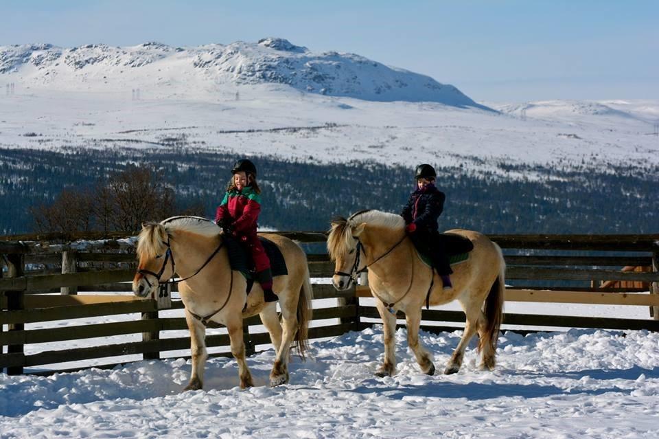 Invitasjon til vintersamling på Langedrag