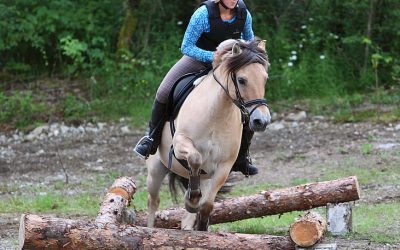 Skeid – ein sport skreddarsydd for dei nasjonale hesterasane