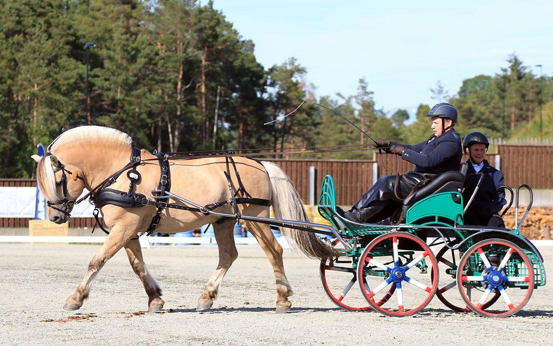Lemping i kvalifiseringskravene for Fjordhest-NM 2021