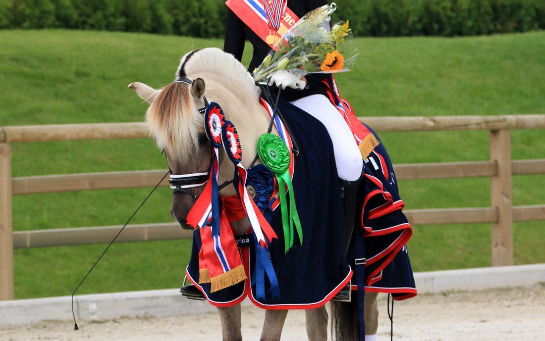 «Hesten må føle seg komfortabel for å kunne prestere»