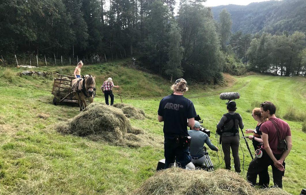 Fjordhest på filmoppdrag