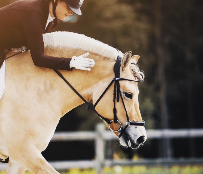 Skal ri for kjent dressurprofil på Oslo Horse Show